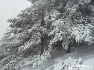 Valle de Iruelas - Pozo de nieve - Cerro de la Encinilla;rutas senderismo mallorca senderismo andalu